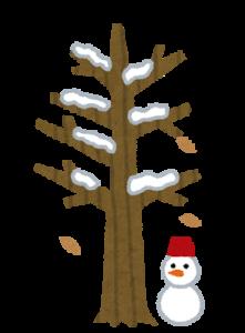 tree4_fuyu
