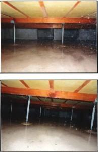 秀建 施工後 和室 白蟻防薬
